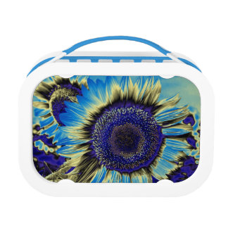Blue Sunflower Lunch Boxes