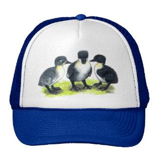 Blue Swedish Ducklings Trucker Hats