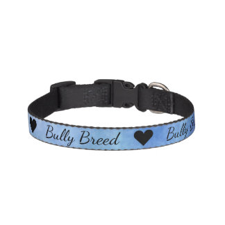 Blue Textured Bullterier Bully Small Dog Collar