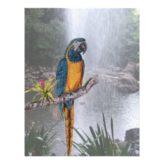 Blue Throated Macaw with Waterfall 21.5 Cm X 28 Cm Flyer