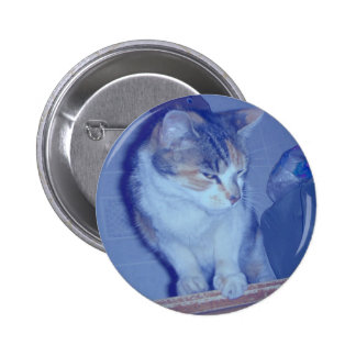 Blue Tone Calico Kitty 6 Cm Round Badge