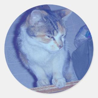 Blue Tone Calico Kitty Round Sticker