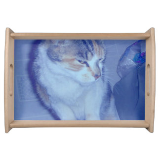 Blue Tone Calico Kitty Serving Platter