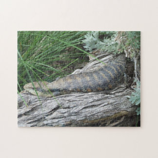 Blue-tongued Lizard Puzzle