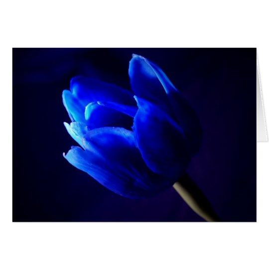 Blue tulip card