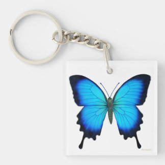 Blue Ulysses Butterfly Keychain