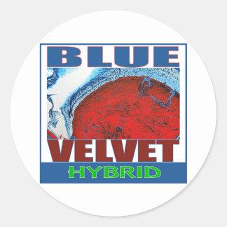 BLUE VELVET HYBRID ROUND STICKERS