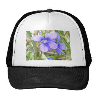 Blue violet mesh hats