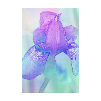 Blue Violet Iris Digital Watercolor Stretched Canvas Print