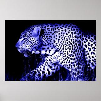 Blue Walking Leopard Poster Print