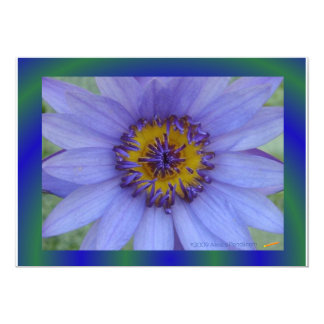 Blue Water Lily Cards 13 Cm X 18 Cm Invitation Card