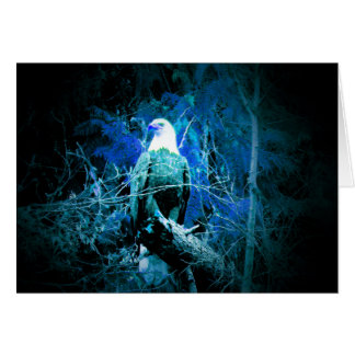 Blue Weis head eagle at the night Card