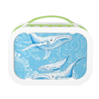 Blue Whales Family Lunch Box