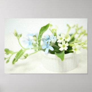 Blue & White flower. Poster