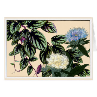 Blue & White Stokes Aster Botanical Art Card
