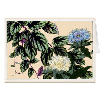 Blue & White Stokes Aster Botanical Art Card