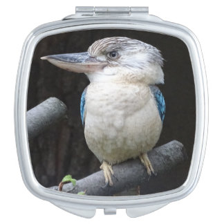 Blue-winged kookaburra compact mirrors