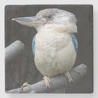 Blue-winged kookaburra stone coaster