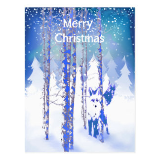 Blue Winter Snow Forest Fox Animal  Foxes Postcard