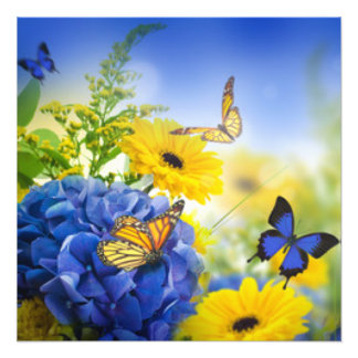 Blue Yellow Flowers With Butterflies Photo