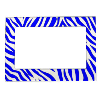 Blue zebra picture frame