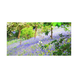 Bluebell Bank Canvas Print