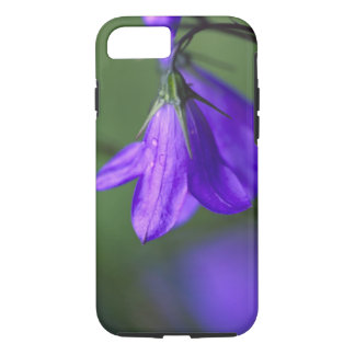 Bluebell flower in Independence Pass in iPhone 7 Case