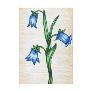 Bluebell Flowers Canvas Print