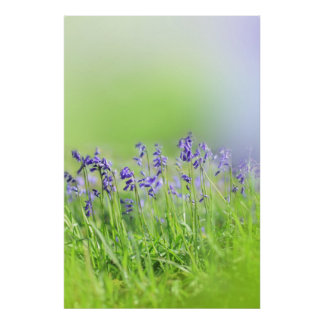 Bluebell Story part one Poster
