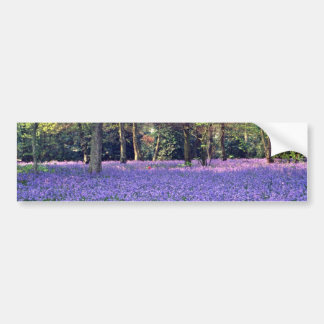 Bluebell Woods, England  flowers Bumper Stickers