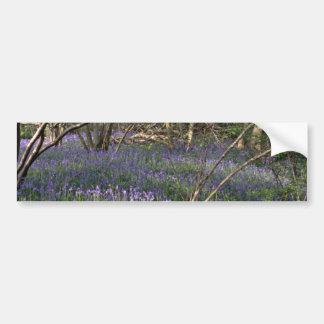 Bluebell Woods  flowers Bumper Stickers