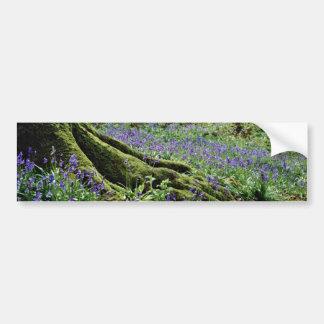 Bluebells, Blicking, Norfolk  flowers Bumper Stickers
