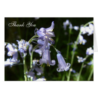 Bluebells Note Card