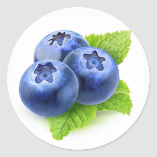 Blueberries and mint classic round sticker