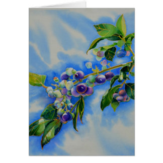 Blueberries Card