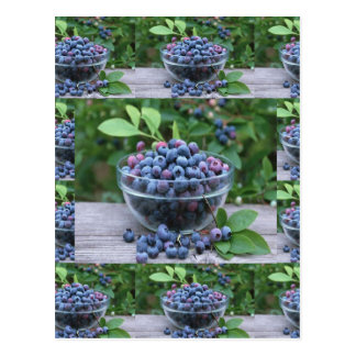 Blueberries Chefs healthy cuisine Breakfast Salads Postcard