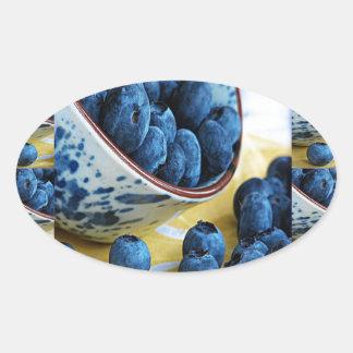Blueberries chefs healthy diet cuisine salads oval sticker