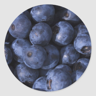 Blueberries! Classic Round Sticker