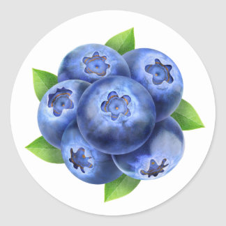 Blueberries round composition classic round sticker