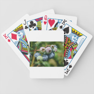 Blueberry Bush Bicycle Playing Cards