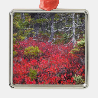 Blueberry bushes and pines metal ornament