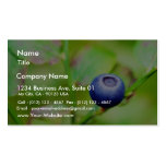 Blueberry Business Card Template