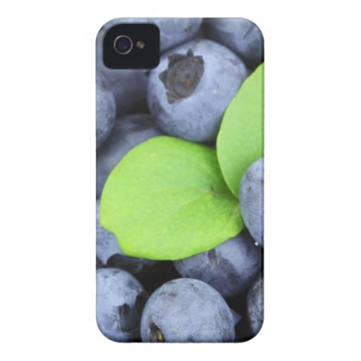 BLUEBERRY Case-Mate iPhone 4 CASE