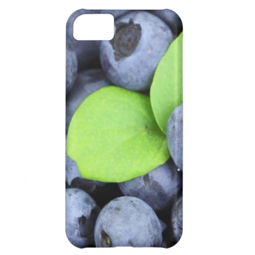 BLUEBERRY iPhone 5C CASE
