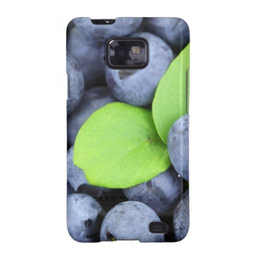 BLUEBERRY GALAXY SII CASE