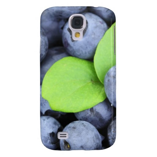 BLUEBERRY HTC VIVID COVERS