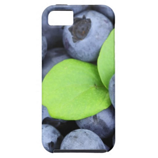 BLUEBERRY iPhone 5 COVER