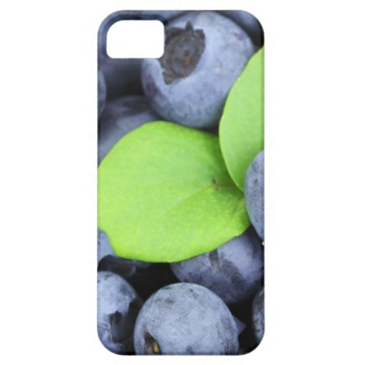 BLUEBERRY iPhone 5 COVERS