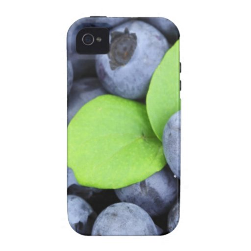 BLUEBERRY Case-Mate iPhone 4 CASES