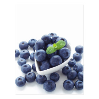 Blueberry isolated ON white Postcard